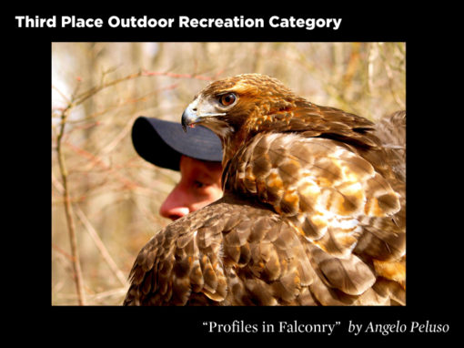 3rd Place Outdoor Recreation Category, Profiles in Falconry by Angelo Peluso
