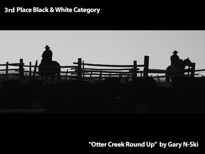 "3rd Place Black & White ""Otter Creek Round Up"" by Gary Nski"