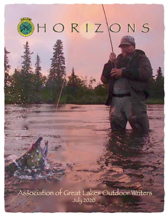 Horizons Newsletter July 2020 Cover