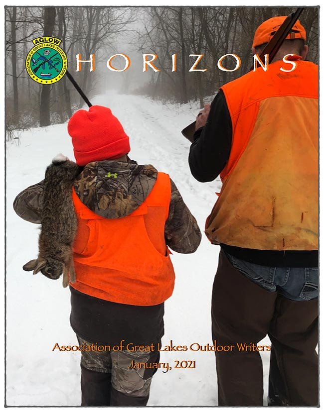 Horizons Newsletter January 2021 Cover