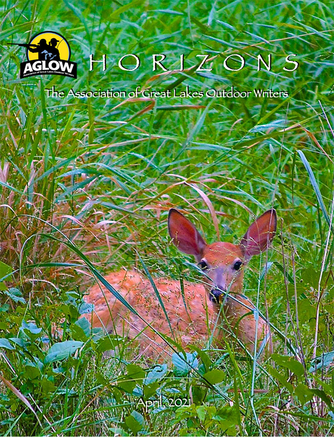 Horizons Newsletter April 2021 Cover